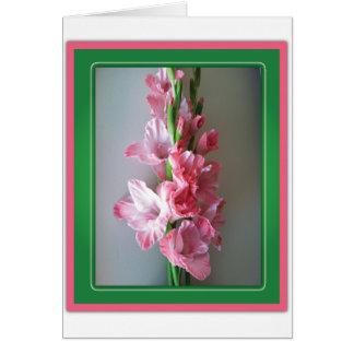 Pink Gladiolus Cards