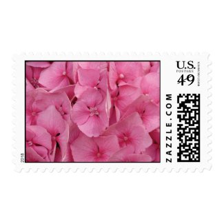 Pink Hydrangeas Postage Stamps