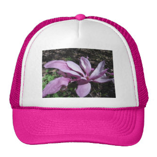 Pink Magnolia In Bloom Mesh Hats