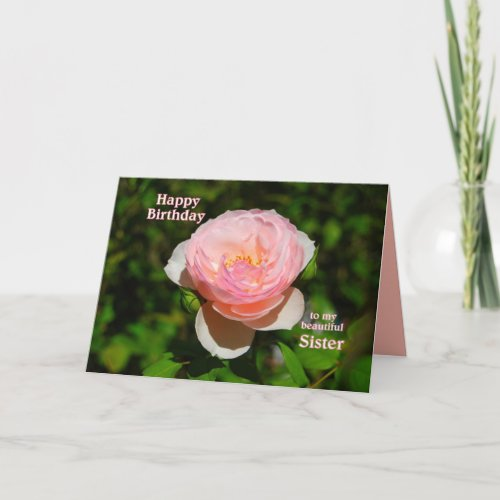 Pink Rose Happy Birthday to Sister card