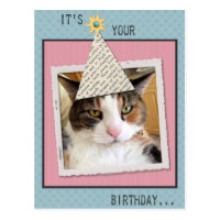 Pookie the Cat Birthday Postcard