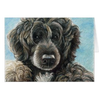Portuguese Water Dog Original Art Notecard Cards