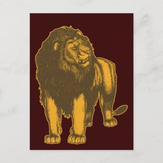 Proud Lion Postcard postcard