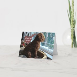 Proud Poodle - Missing You - Card