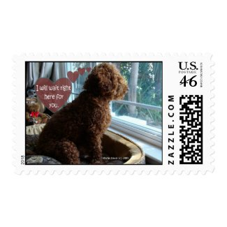 Proud Poodle - Missing You - Postage stamp