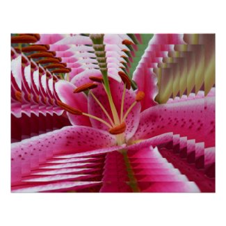 Psychedelic Abstract Pink Lily Poster print