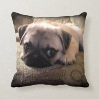 Pug Dog Throw Pillow | Zazzle