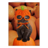 Pumpkin Kitten Halloween Card