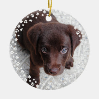 Puppy's First Christmas Holiday Ornament