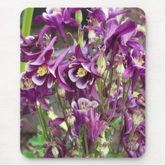 Purple and White Columbines Mousepad mousepad