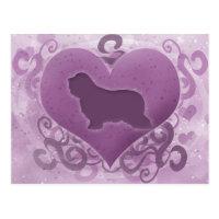Purple Bearded Collie Valentine Postcard