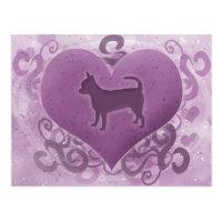 Purple Chihuahua Valentine Postcard