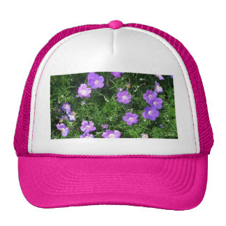 Purple Cosmos Hat