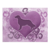 Purple Flat Coated Retriever Valentine Postcard
