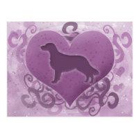 Purple Flat Coated Retriever Valentine Postcard
