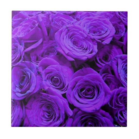 purple roses ceramic tile