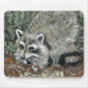 Raccoon Painting mousepad