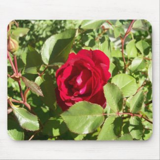 Red Rose Mousepad mousepad