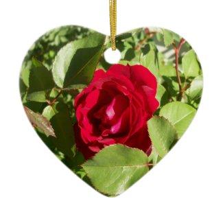 Red Rose Ornament ornament