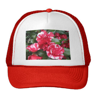 Red & White Striped Roses Hats