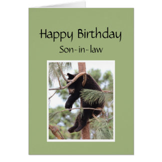 Funny Birthday For Son In Law Greeting Cards Zazzle
