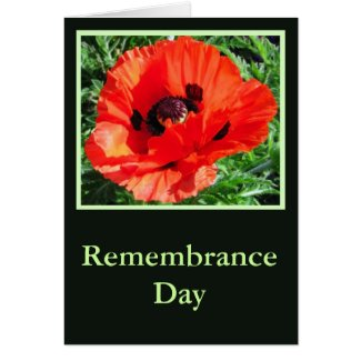 Remembrance Day - Card card