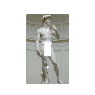 Risque Michelangelo's David Light Switch Cover