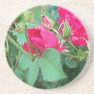 Rose Bud with Water Droplet Coaster coaster