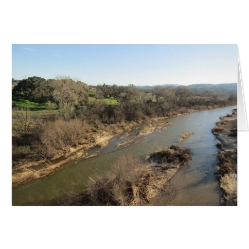 Salinas River from Vineyard Bridge, Templeton, CA Card