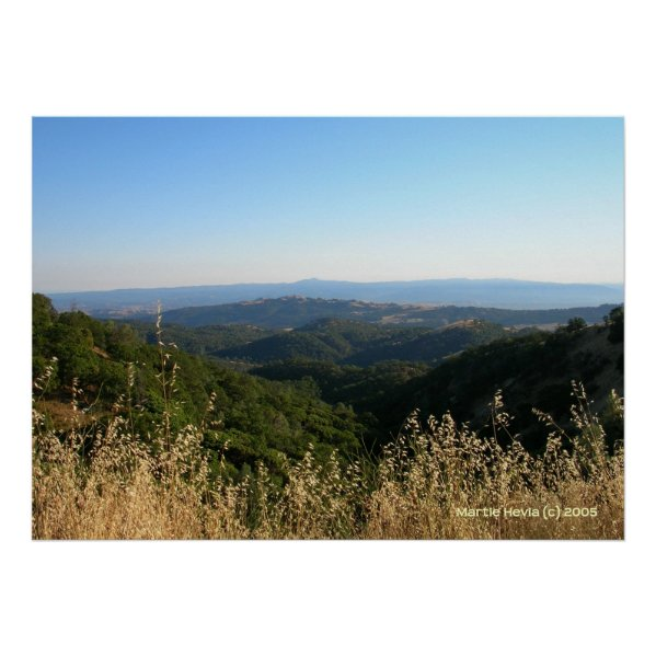 San Jose Foothills Dry Grass Posters