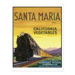 Santa Maria Postcard