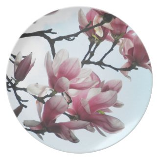 Saucer Magnolia Tulip Tree Flowers Photo Party Plate