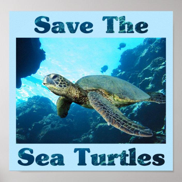 save the sea turtles poster zazzle com