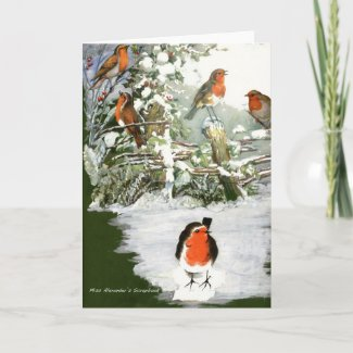 Scrapbook Robins card