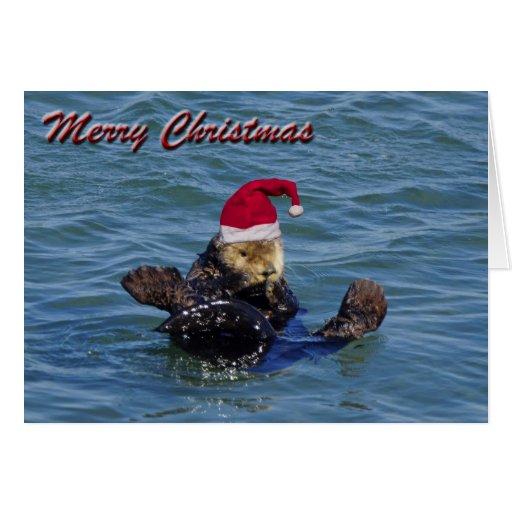 Sea Otter Christmas Card Zazzle