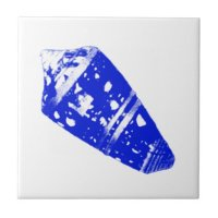 Seashell - cobalt blue and white ceramic tile | Zazzle