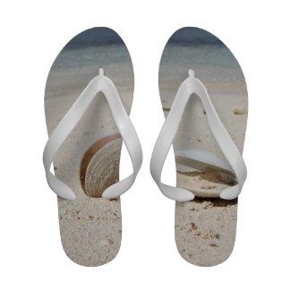 Seashells on sandy Caribbean beach close-up Flip Flops