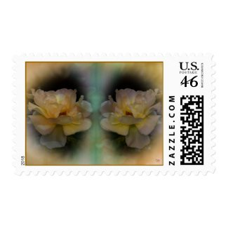 Seeing Double Postage