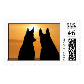 Shepherd Sundown Postage stamp