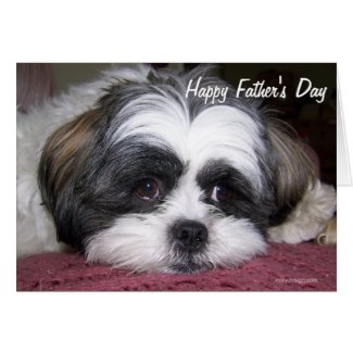 Shih Tzu Dog Father's Day Greeting Card