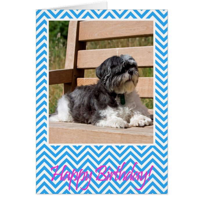 Shih Tzu Dog Happy Birthday Greeting Card Zazzle