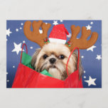 Shih Tzu dog in a red shopping bag