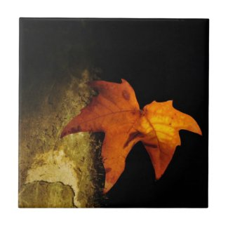 Simple Beauty - Fall Leaf Small Square Tile