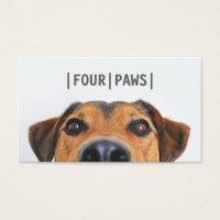 Simple gray pet photography cute dog photo plain business card
