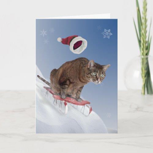 Sledding Cat Christmas Card