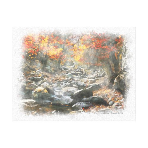Small Brook Canvas Print
