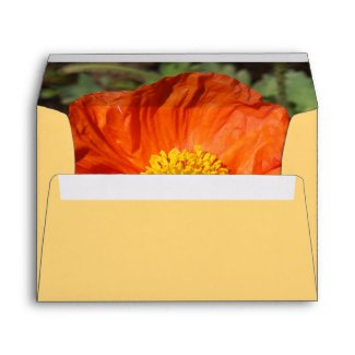 Small Orange Poppy Envelope envelope