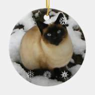 Snow Cat Ornament