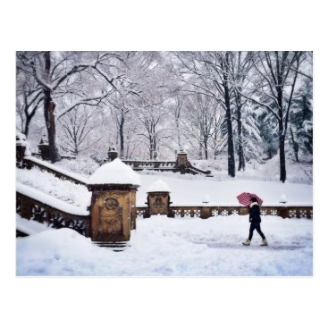 Snow-Covered Stairs In Central Park Postcard