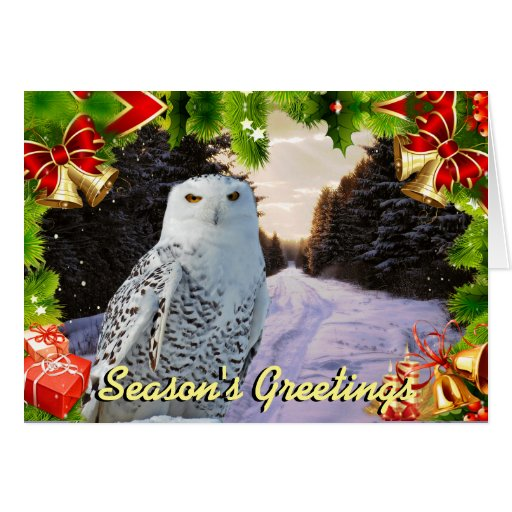 Snowy Owl Christmas Card Zazzle